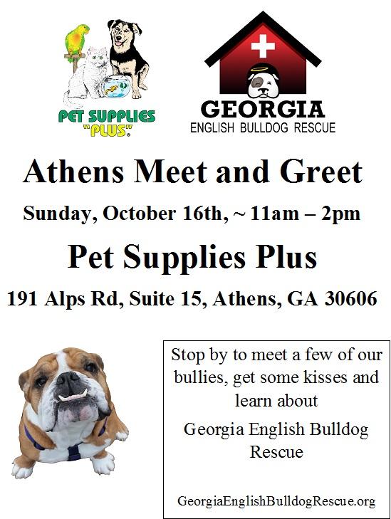athens-meet-and-greet2
